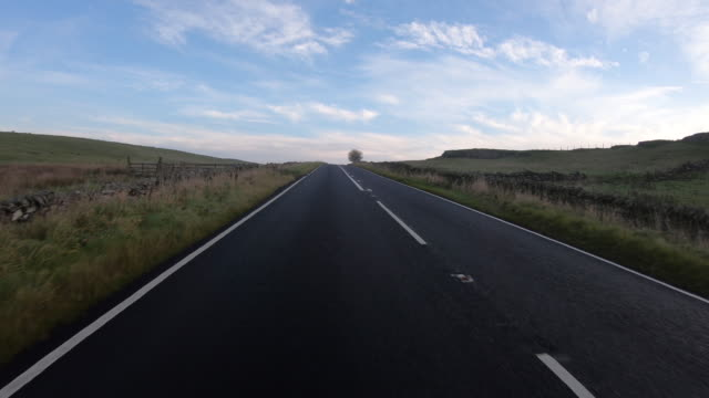 point of view shot of driving through a rural area near hexham - plantation stock videos & royalty-free footage