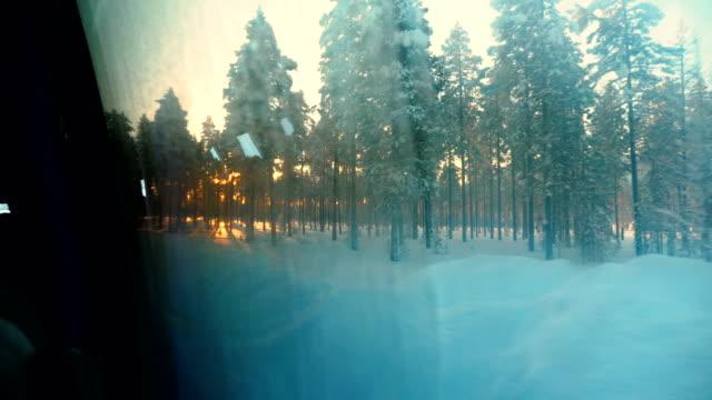 vídeos de stock, filmes e b-roll de tiro do ponto de vista de execução em um banco de neve coberta estrada com pneus para uma árvore durante o inverno em arjeplog, suécia - pinaceae