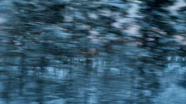 vidéos et rushes de coup de point de vue de l'exécution sur une neige couverts route avec des traces de pneu vers un arbre au cours de l'hiver à arjeplog en suède - low angle view