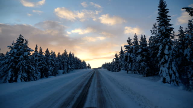 Point of view shot of running on a snow covered road with tire tracks towards a tree sunset during winter in Arjeplog ,Sweden