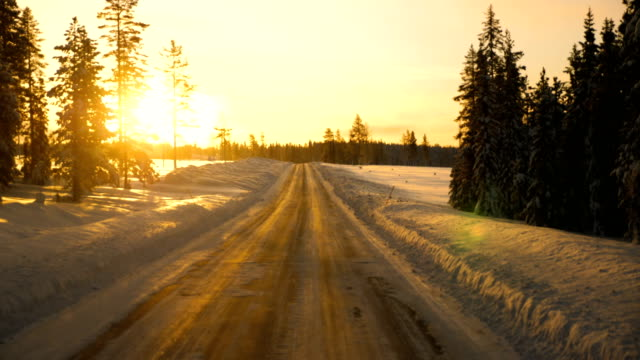 Point of view shot of running on a snow covered road with tire tracks towards a tree during winter in Arjeplog ,Sweden