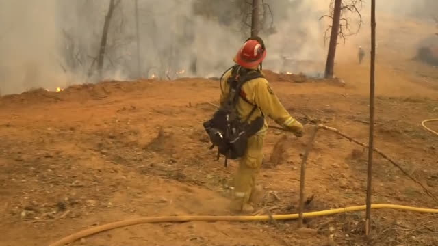 point of view shot walking alongside firefighters as they follow a fire hose through a burning forest in paradise, california on november 18, 2018. - 消火ホース点の映像素材/bロール