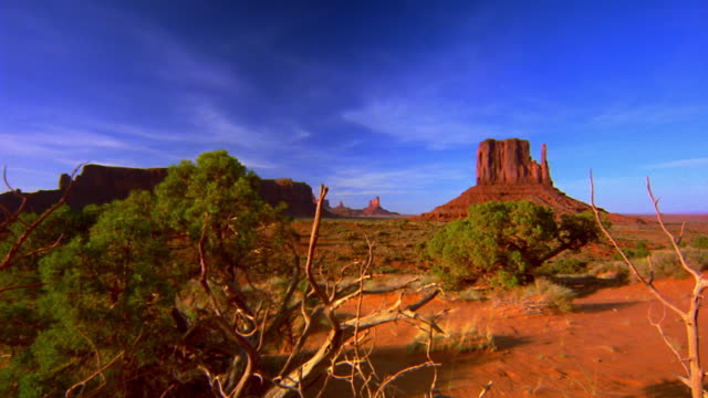 point of view time lapse over desert plants + floor with buttes in distance / Monument Valley, USA