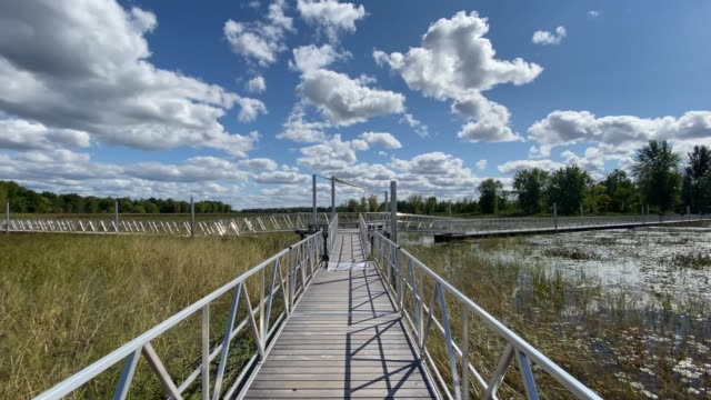 point of view walking on floating walkway in summer - parc national stock videos & royalty-free footage