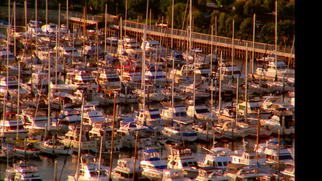 aerial point of view wide shot over boats in marina + park with city in background / san diego, ca - san diego stock videos & royalty-free footage