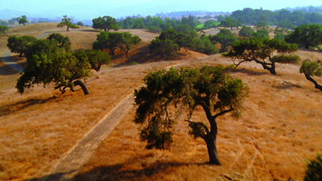 aerial point of view zoom in over hilly countryside with roads + trees / california - なだらかな起伏のある地形点の映像素材/bロール