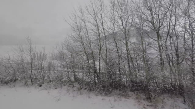 Point-of-view of the countryside with snow from a moving train