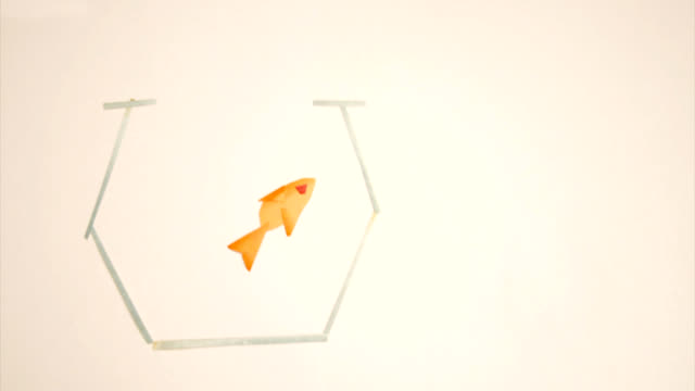 Poisson rouge Stop Motion / RED FISH LOOP