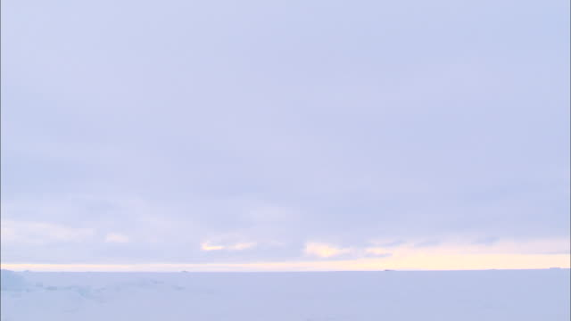 A polar bear lying down on an iceberg in the North Pole