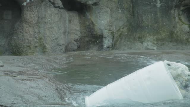 a polar bear repeatedly pushes a large barrel into the water - ドラム容器点の映像素材/bロール