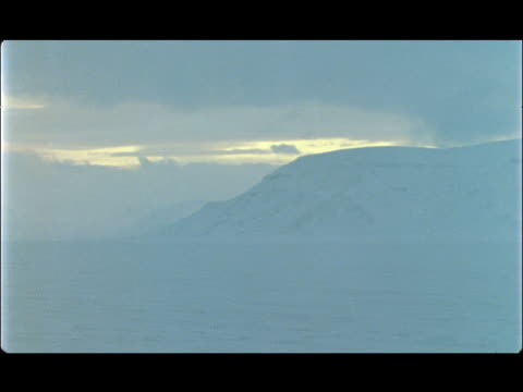 a polar bear sleeps within a vast, snowy landscape. - polarklimat bildbanksvideor och videomaterial från bakom kulisserna