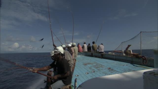 vídeos de stock, filmes e b-roll de pole fishermen catch and fling skipjack tuna (katsuwonus pelamis) onboard, solomon islands - indústria da pesca