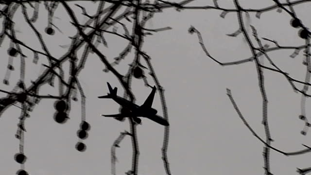 vídeos y material grabado en eventos de stock de police believe three missing schoolgirls are travelling to syria to join islamic state; ext plane flying across sky - bare tree
