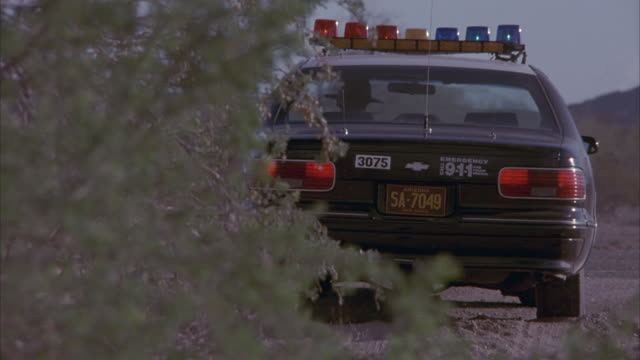 A police car speeds out from behind a tree and turns onto the highway.