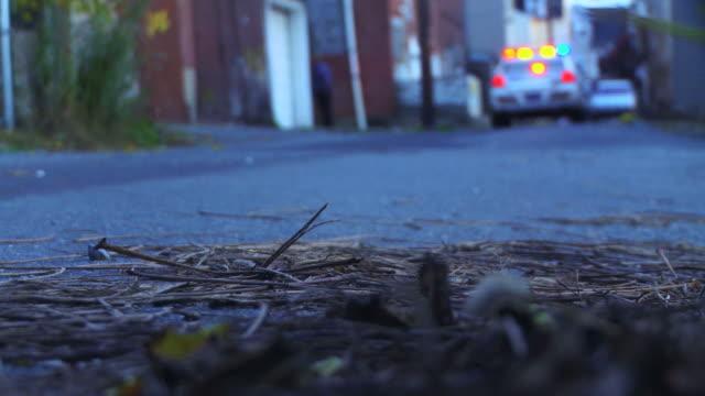 警察の車-都会のブルー - パトカー点の映像素材/bロール