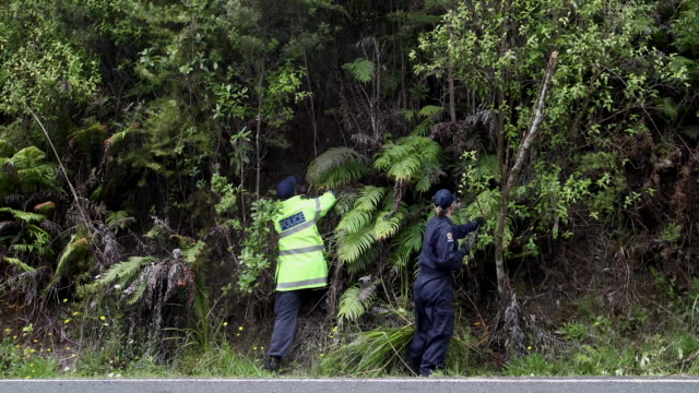 police continue to search the area where grace millane's body was found - missing persons stock videos & royalty-free footage