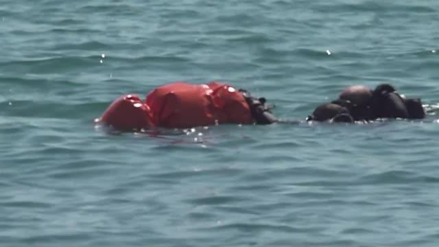 vídeos de stock e filmes b-roll de police divers retrieve an explosive device found underwater by a beach in barcelona - encontrar
