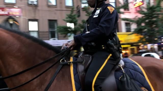 vídeos y material grabado en eventos de stock de nypd police horse patrolling in new york city - oficial rango militar