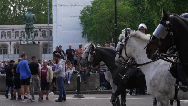police horses gather in parliament square on june 13 2020 in london united kingdom following a social media post by the farright activist known as... - mammal stock videos & royalty-free footage
