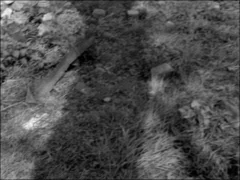 police investigate murder of frederick jeffs england warwickshire birmingham handsworth ext lovers lane where body of murdered shopkeeper frederick... - poster stock videos and b-roll footage