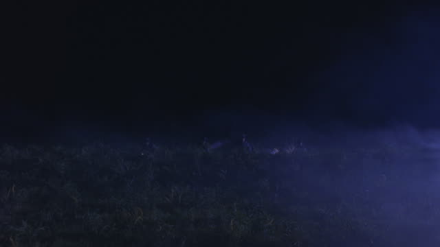 police officers shine flashlights through a foggy meadow. - electric torch stock videos & royalty-free footage