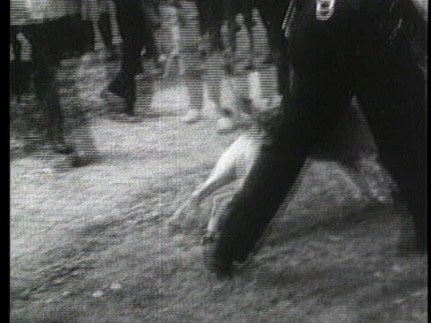 vídeos y material grabado en eventos de stock de police officers use dogs to break up a civil rights demonstration in birmingham, alabama. - human rights or social issues or immigration or employment and labor or protest or riot or lgbtqi rights or women's rights