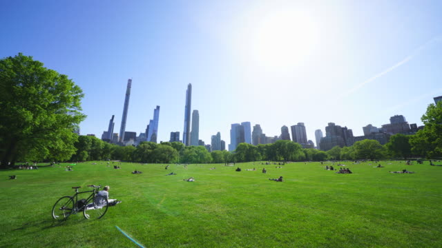 police officers will limit access to the central park sheep meadow to prevent overcrowding - wolkenloser himmel stock-videos und b-roll-filmmaterial