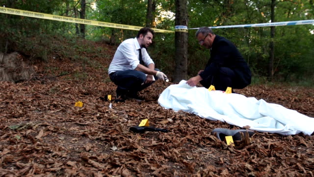 police on crime scene - named wilderness area stock videos & royalty-free footage
