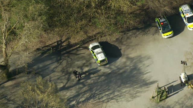 police search lake in epping forest where body was found, in the search for missing student richard okorogheye - tree area stock videos & royalty-free footage