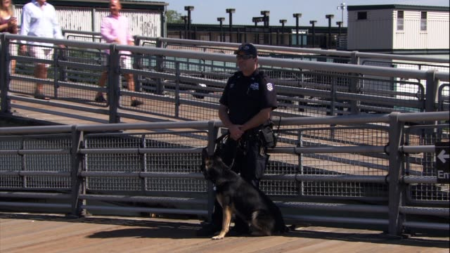 police security at the usta national tennis center on september 07 2013 in flushing new york - flushing meadows corona park stock videos and b-roll footage