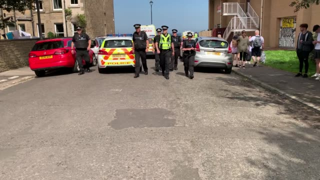 police were called to portobello beach in edinburgh after reports of a large disturbance on july 31. at around 3pm, officers showed up at the beach... - portobello mushroom stock videos & royalty-free footage