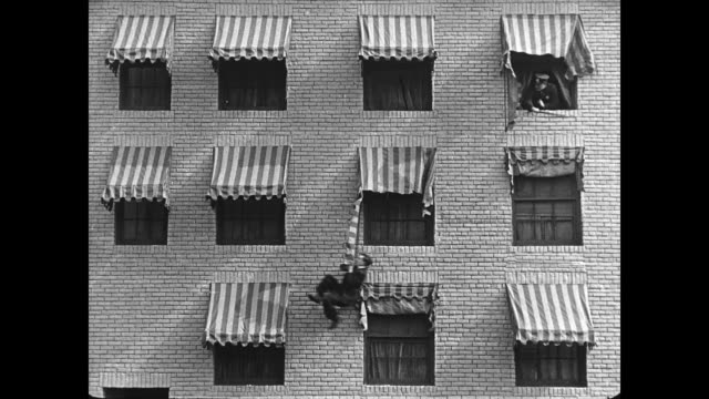 1922 Policeman chases fleeing man (Buster Keaton) upstairs before man exits through window and uses ripped awnings to swing from one to another to reach the ground