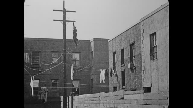1920 policeman finds man (buster keaton) hiding out on top of telephone pole, he  slides down clothesline and walks calmly right into back of paddy wagon - telegraph pole stock videos and b-roll footage