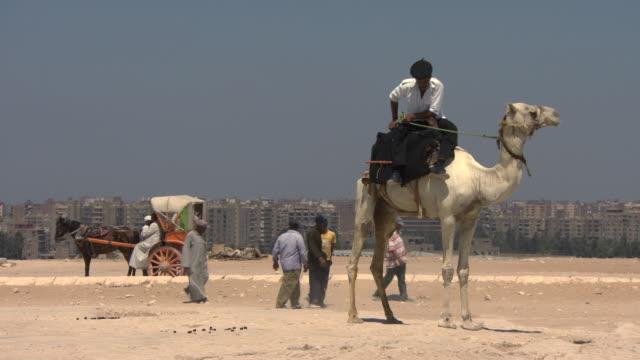 Policeman on camel - Giza pyramids, Egypt