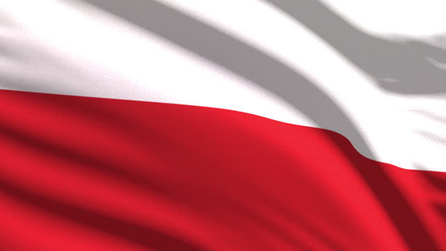 polish flag waving in the wind with highly detailed fabric texture. seamless loop - eastern european culture stock videos & royalty-free footage