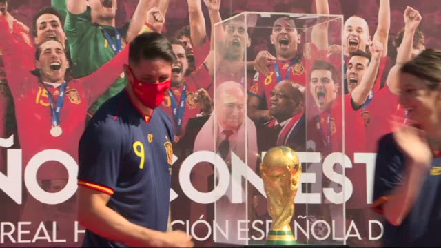 vídeos de stock, filmes e b-roll de political authorities and personalities from the world of sports such as fernando torres celebrate the 10th anniversary of the victory of the spanish... - áfrica meridional