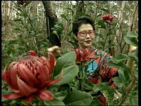 Republic Referendum SEQ Jenny Kee sniffing flowers in outback Pair of kangaroos hopping along through bush Jenny Kee interviewed SOT I'm an...