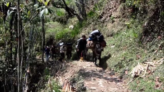 Polling officials horses and porters trek up to a remote Indian polling station in Eastern India carrying electronic voter machines and supplies...