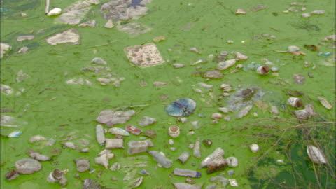 vídeos y material grabado en eventos de stock de ms ha pan polluted canal or pond, tianjin, tianjin, china - contaminación de aguas