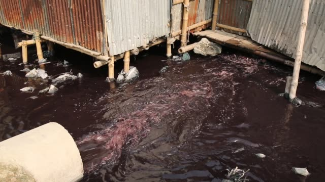 polluted water from factories waste enter in the lake at slum area in dhaka bangladesh in recent report says slum dwellers at risk of diabetes and... - dhaka stock-videos und b-roll-filmmaterial