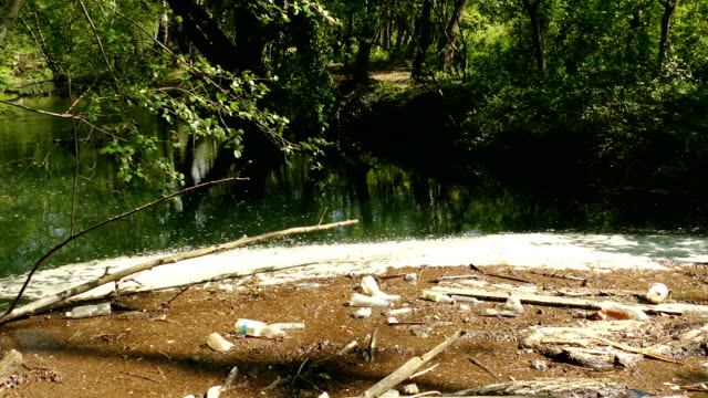 pollution of the river into the reserve
