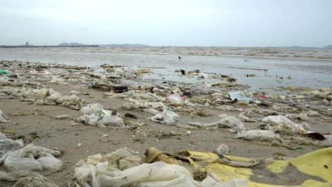 pollution on the beach of tropical sea. - unhygienic stock videos & royalty-free footage