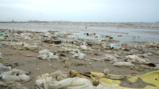 pollution on the beach of tropical sea. - hygiene stock videos and b-roll footage
