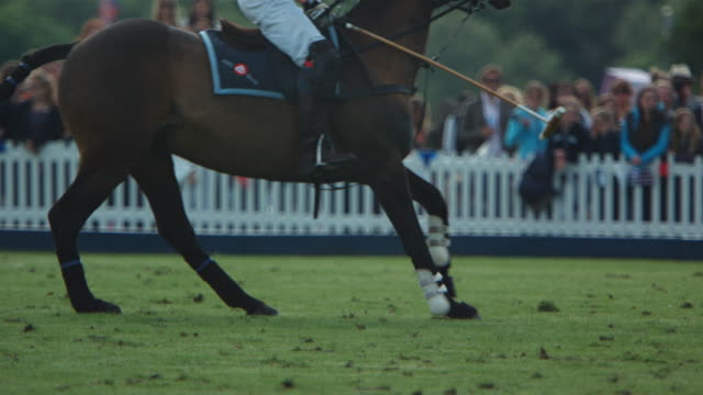 MS SLO MO TS Polo ball being hit by player / Manchester, United Kingdom