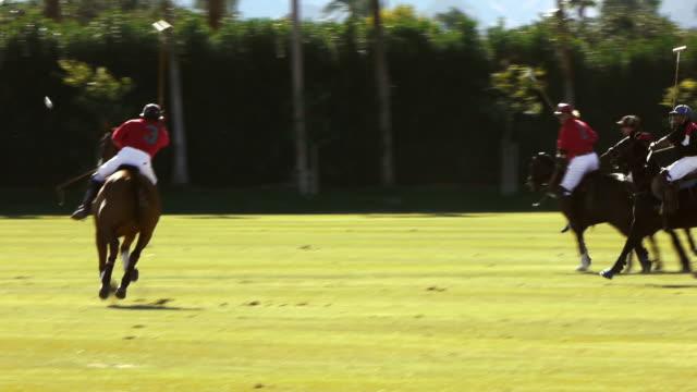a polo player strikes a ball toward the goal on a field in indio, california. - ゴールポスト点の映像素材/bロール