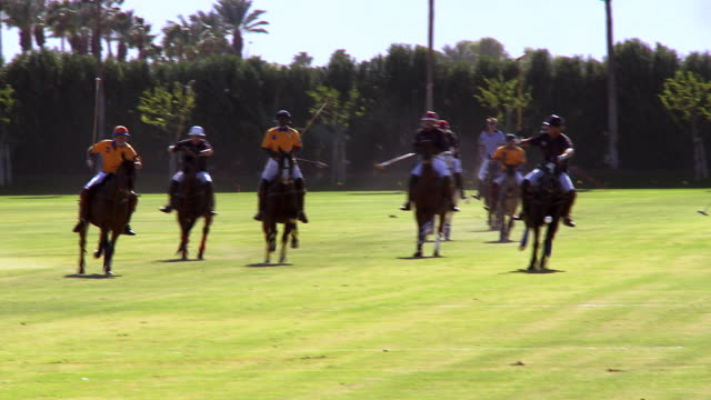 ws pan polo player taking swing and striking ball / indio, california, usa - erbivoro video stock e b–roll