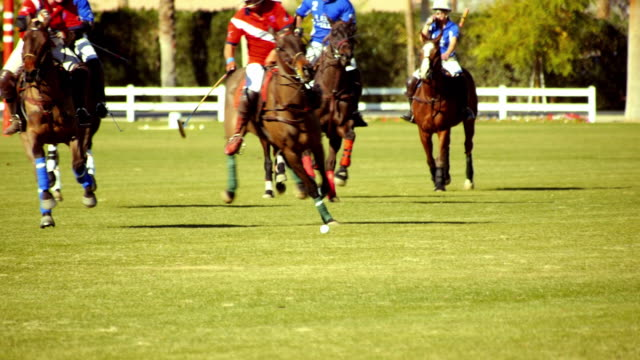SLO MO polo players chasing ball as their horses gallop towards camera chasing ball and red team player cuts in front of blue team and strikes ball forward  / Indio, California, USA