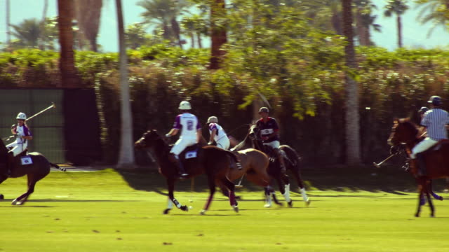 SLO MO PAN polo players maneuvering ball along goal line trying to keep it away from opposing team  / Indio, California, USA