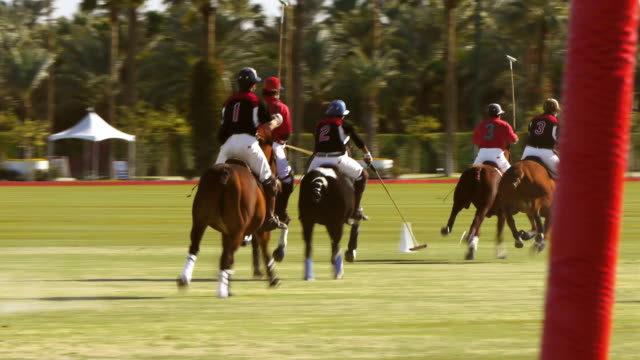 polo players race for the ball on a field. - ゴールポスト点の映像素材/bロール