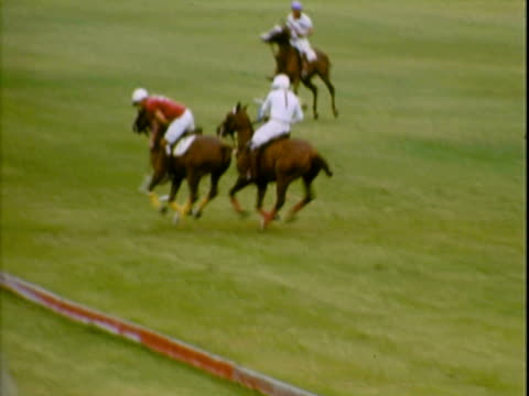vídeos y material grabado en eventos de stock de polo players riding across the field making plays - animales de trabajo